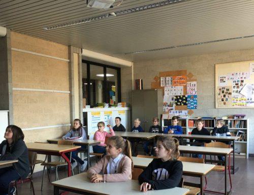 Basisscholen op bezoek